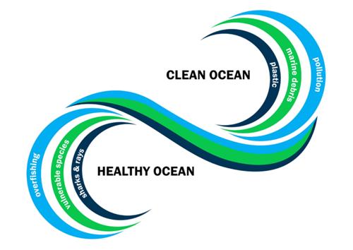 Clean Healthy Ocean
