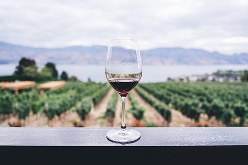 Mn Wine