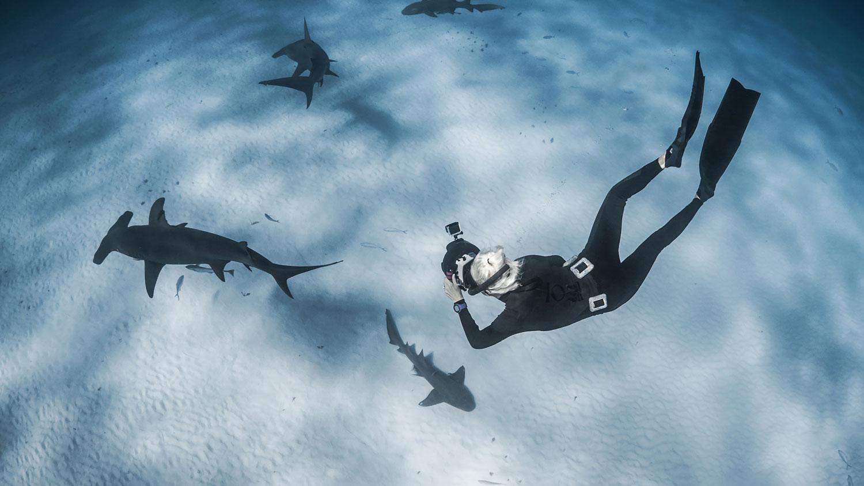 Jillian Freediving With Great Hammerhead Sharks, Camera, Underwater, Diving